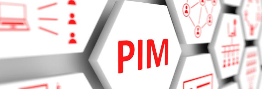 Projet PIM